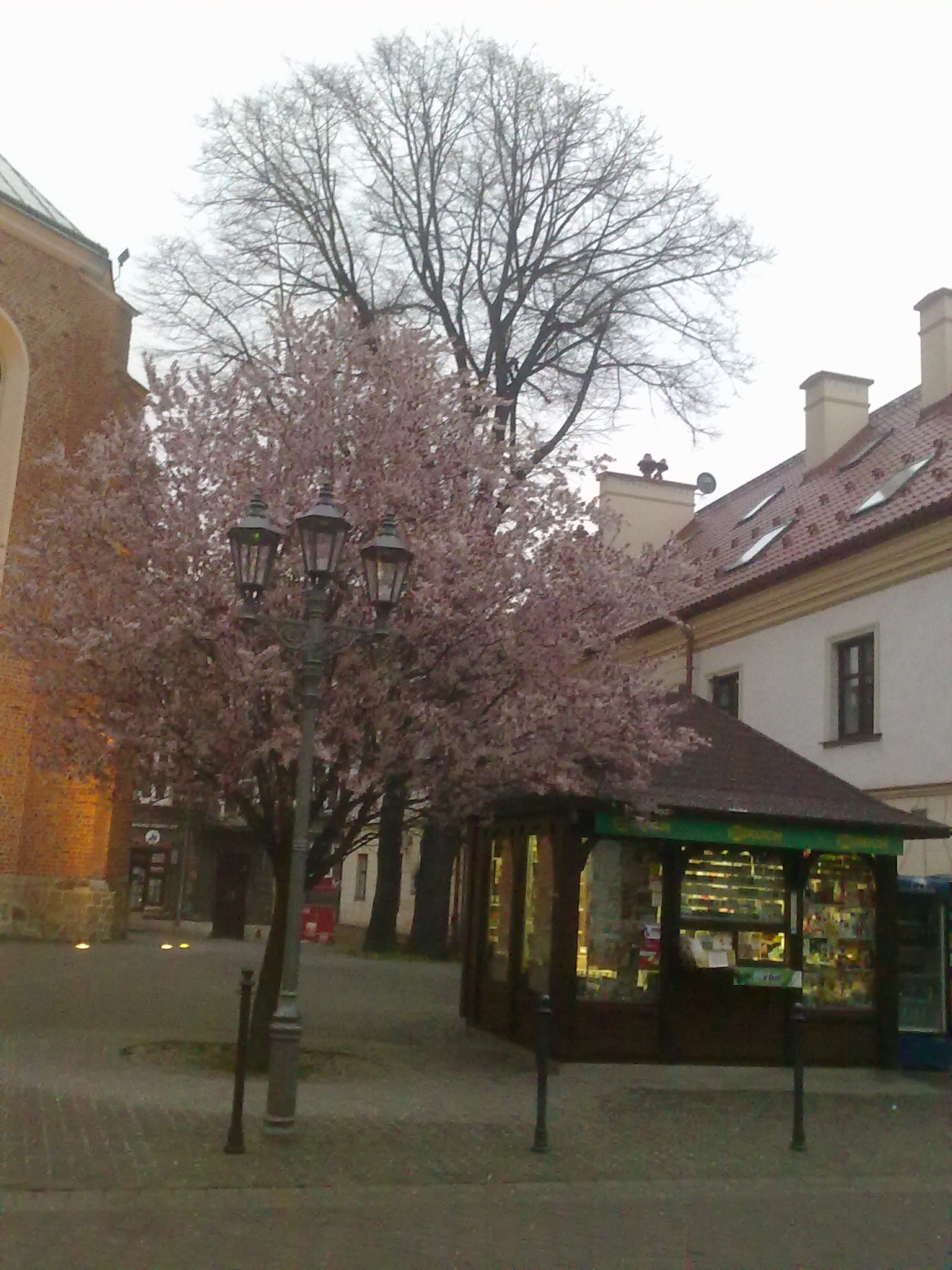 Kiosk w Rzezowie, fot. Agata Dąmbska