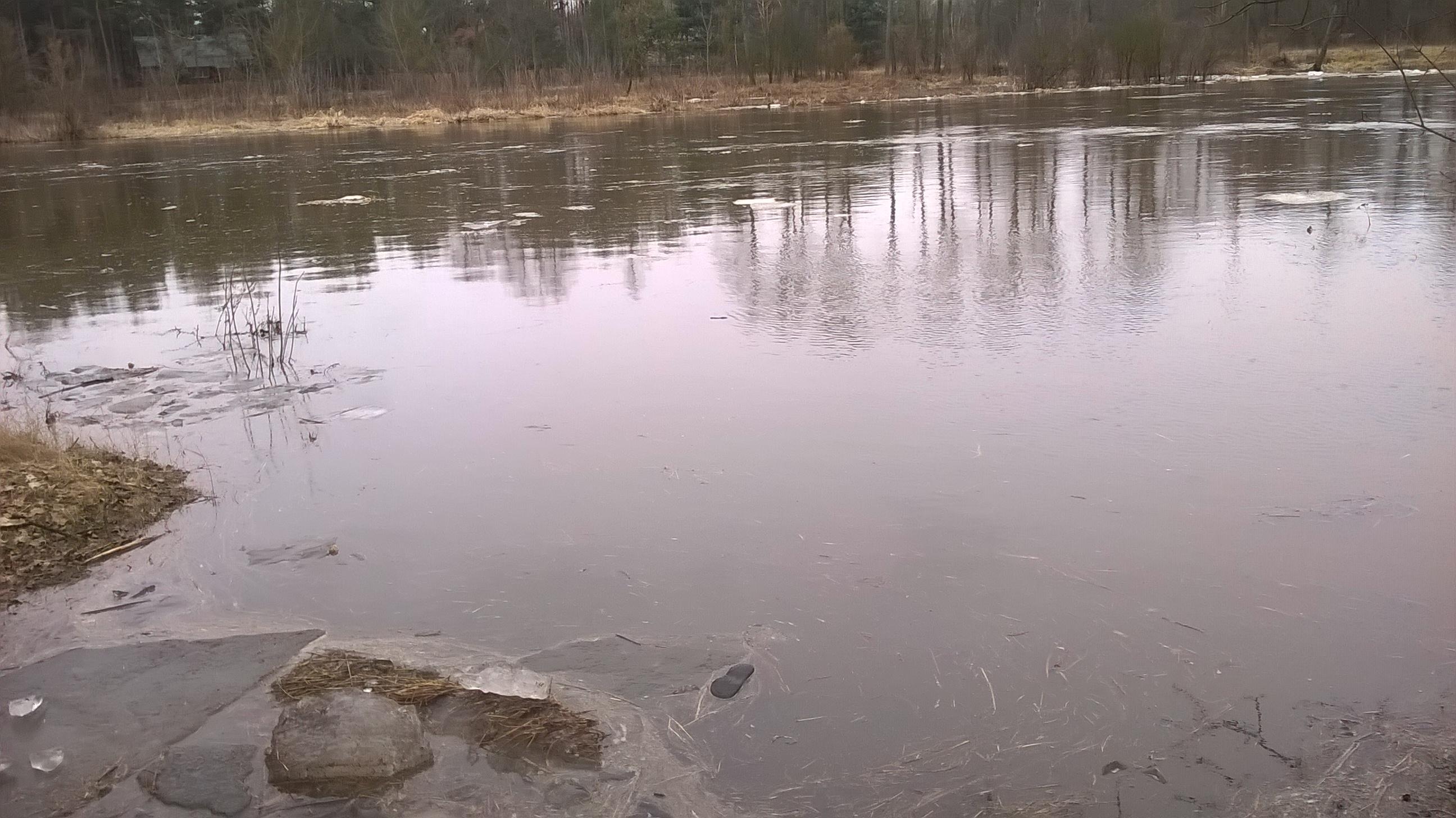 Rzeka Liwiec. Fot. Agata Dąmbska