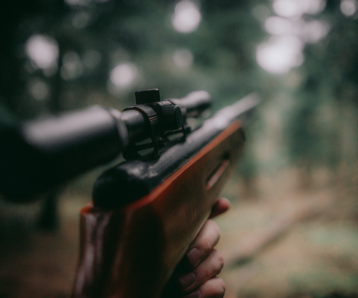 Nie strzelać….